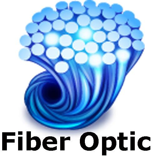 Rice Lake 78026 Fiber optic, duplex cable 100 ft for 320IS, CW-90 and CW90X