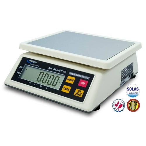 Intelligent Weighing Technology XM-3000 (3-XM1-S300-022) NTEP Toploading Industrial Scale 6 x 0.002 lb