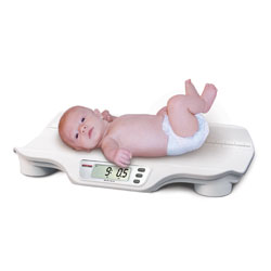 Rice Lake Digital Bariatric/Handrail Scale (240-10)
