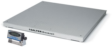 Salter Brecknell DCSX Pegasus Digital Floor Scales with SBI140 Indicator