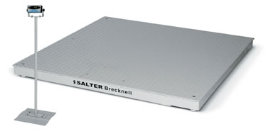 Salter Brecknell DCSM Pegasus Digital Floor Scales with SBI140 Indicator